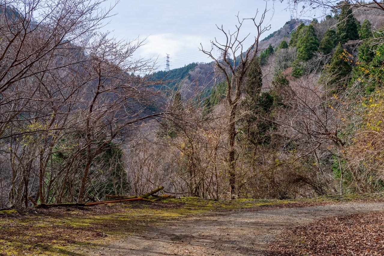 201213高指山-075