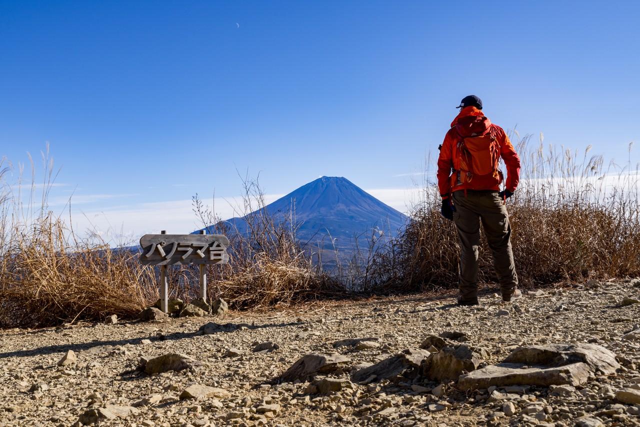 パノラマ台から見た富士山