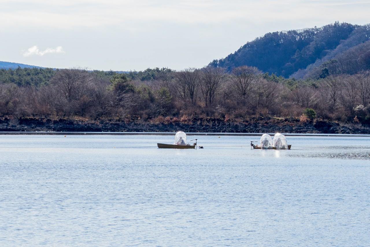 精進湖の釣り船