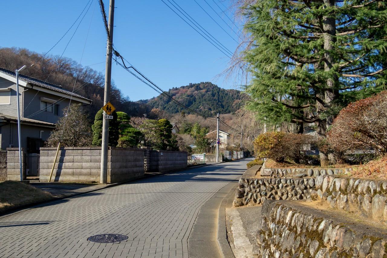 201223北高尾山稜-010