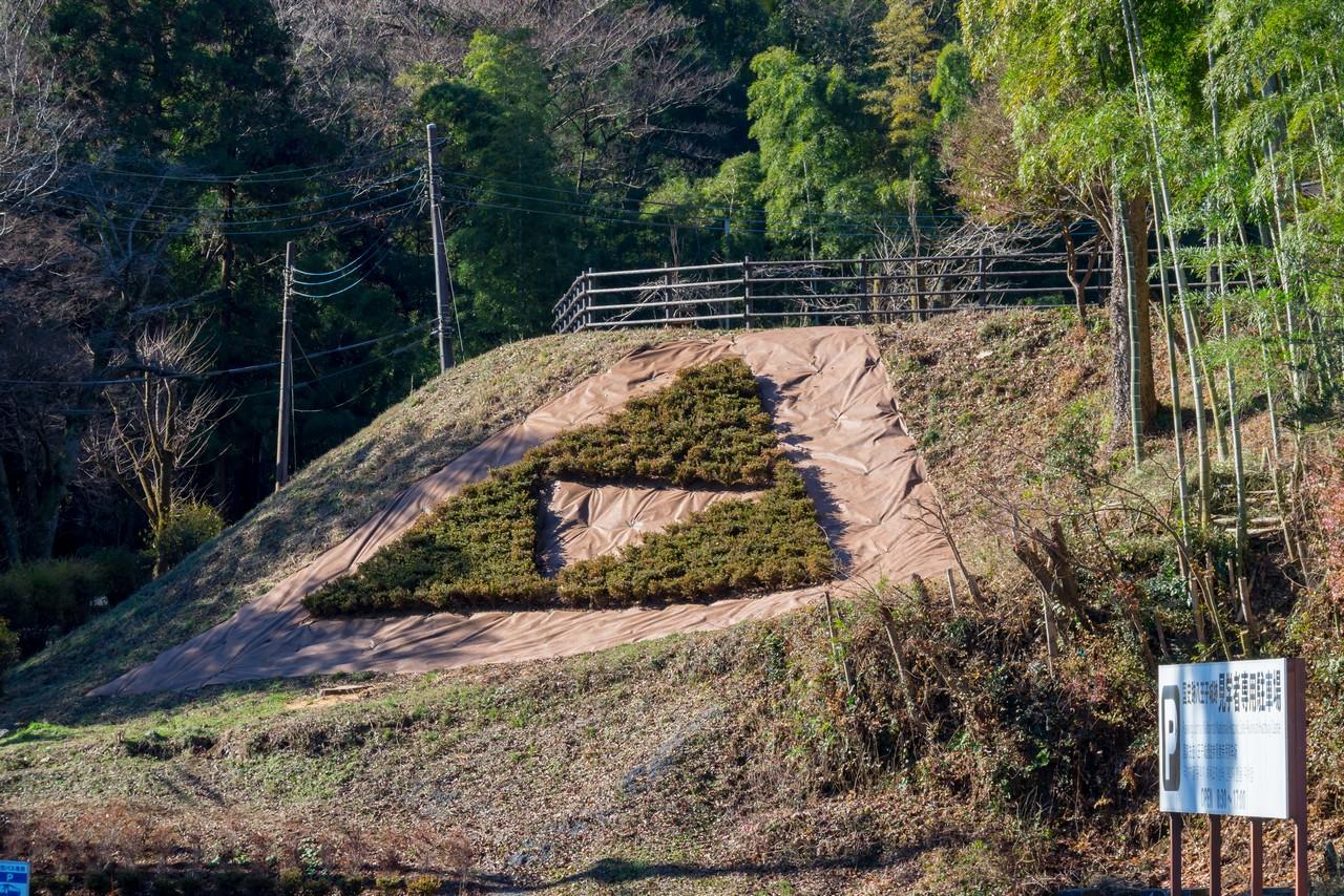 八王子城山の三つ鱗紋