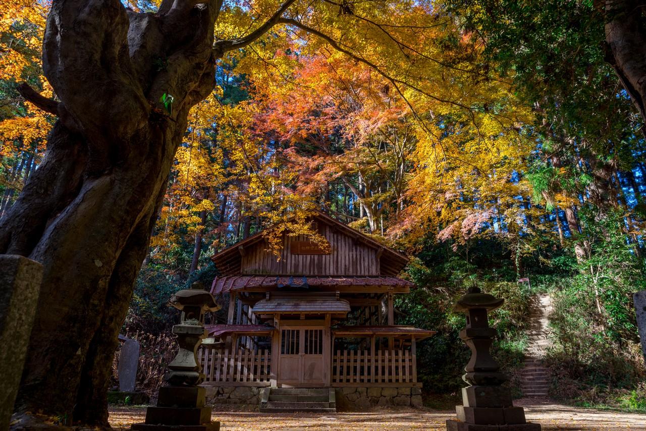 八王子城山の八王子神社