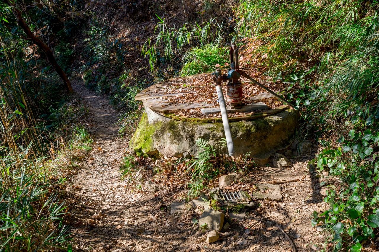 八王子城山の坎井