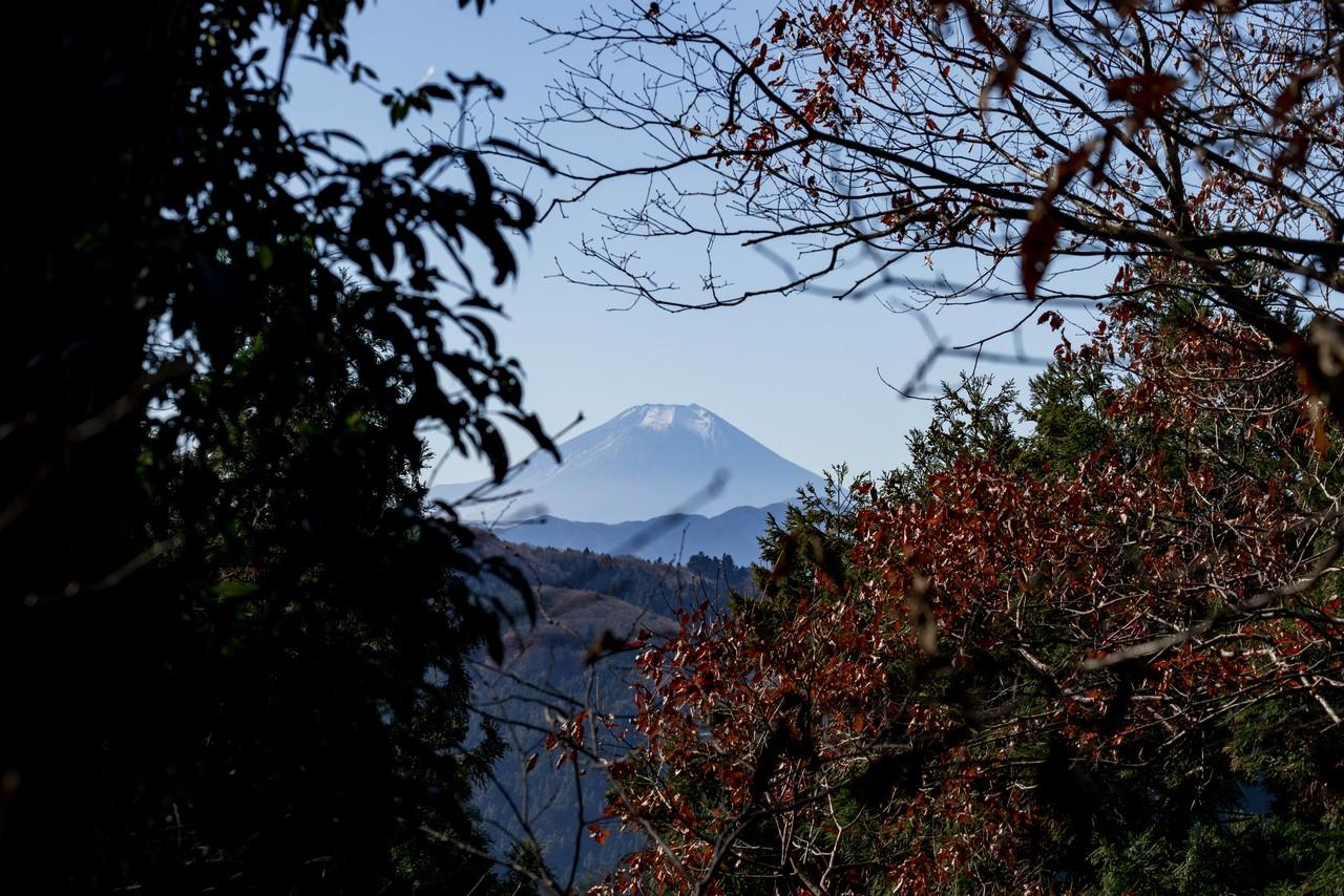 富士見台からみた富士山