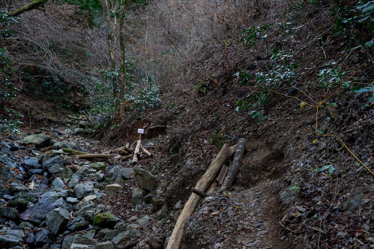 201223北高尾山稜-067