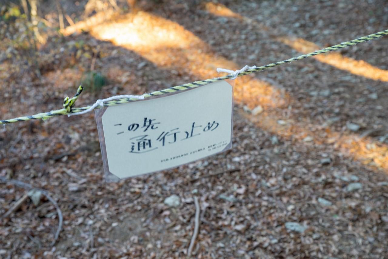 201223北高尾山稜-075