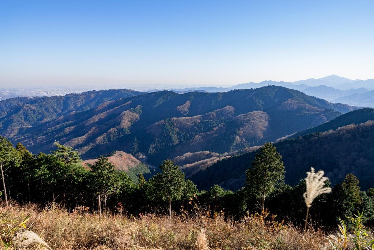 景信山から見た高尾山と小仏城山