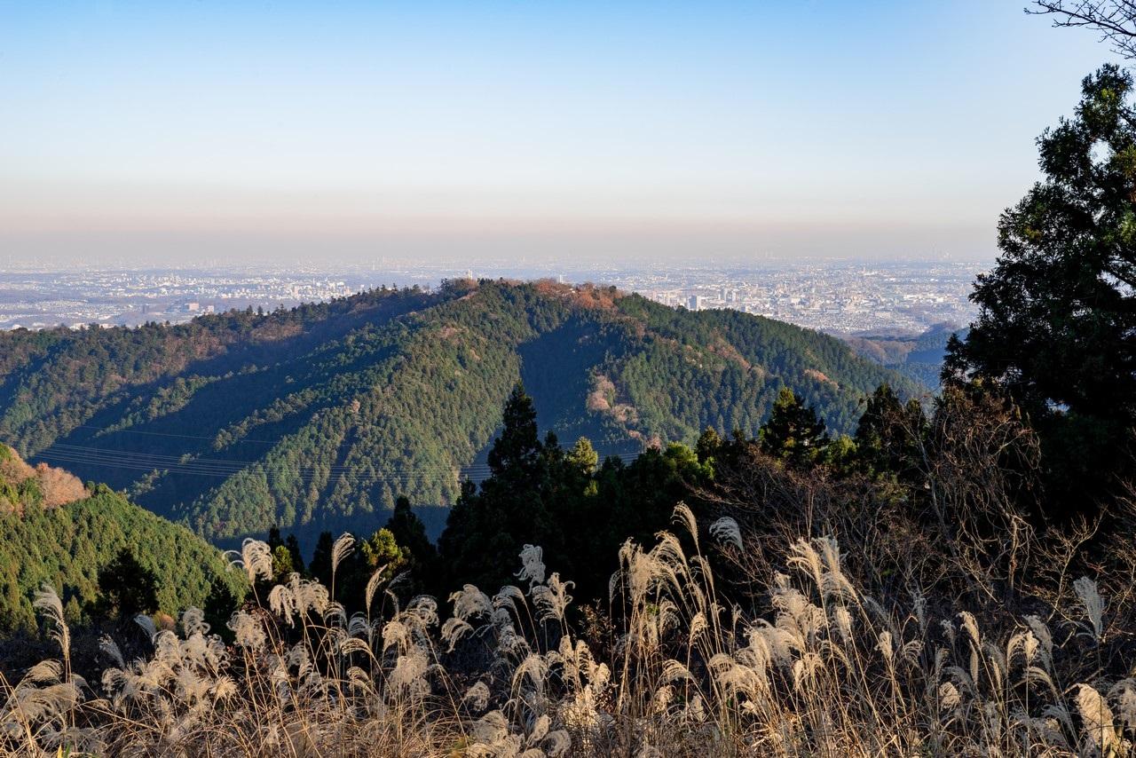 小仏城山から見た高尾山