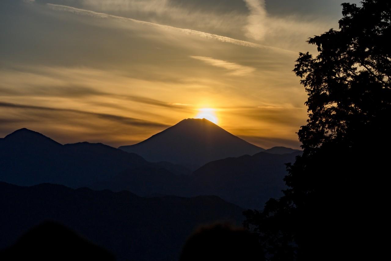 201223北高尾山稜-099