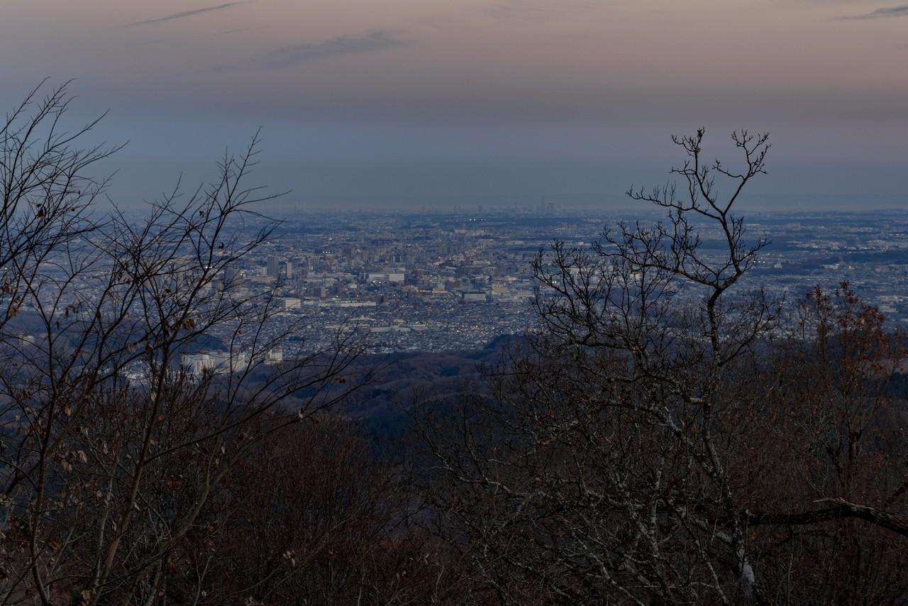 201223北高尾山稜-104