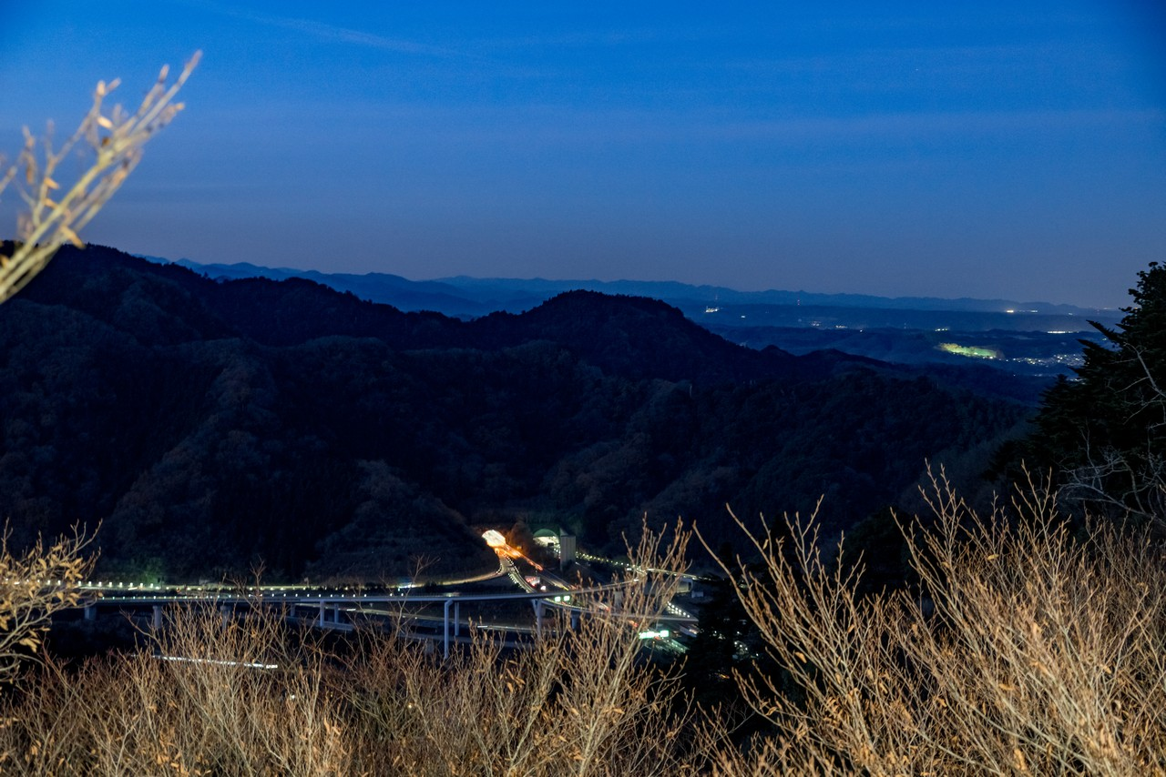 201223北高尾山稜-112