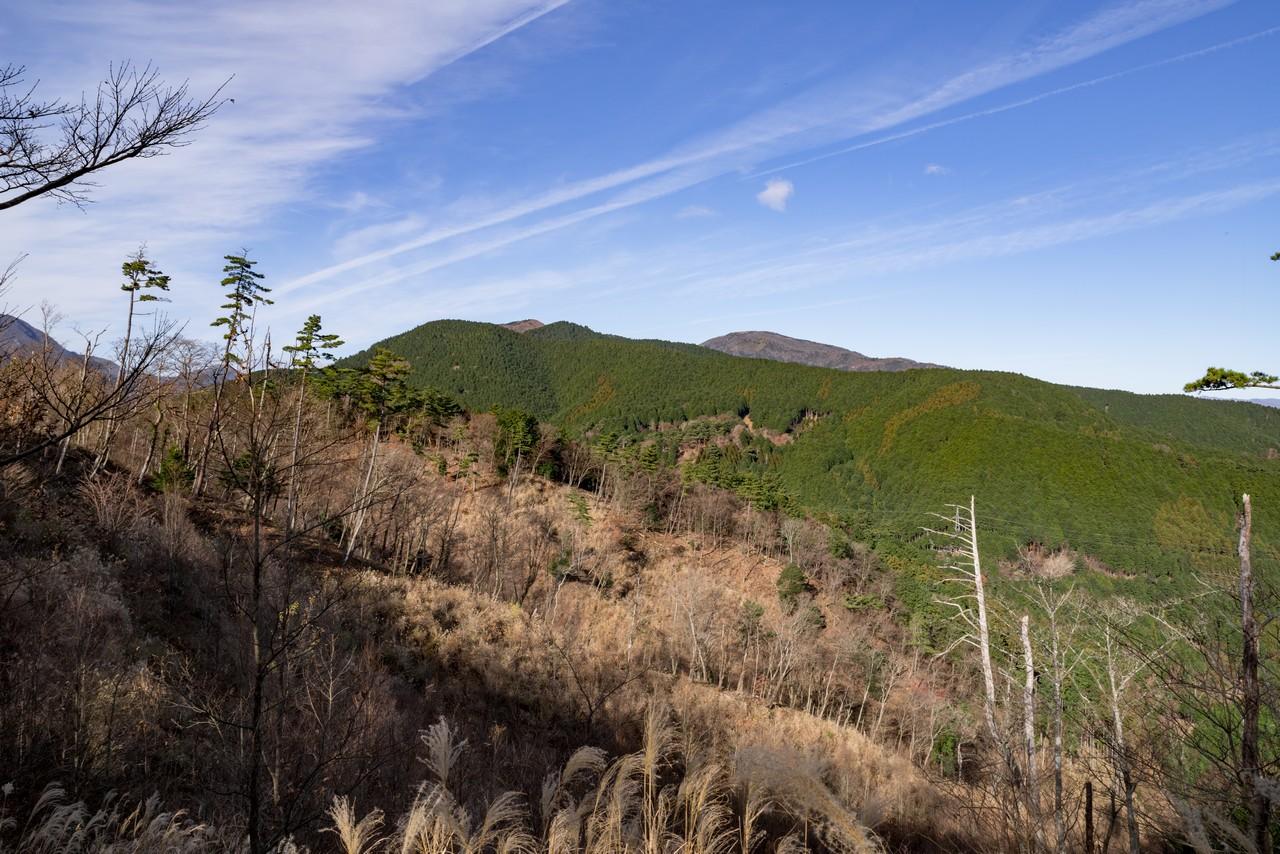 塔ノ峰から見た明神ヶ岳