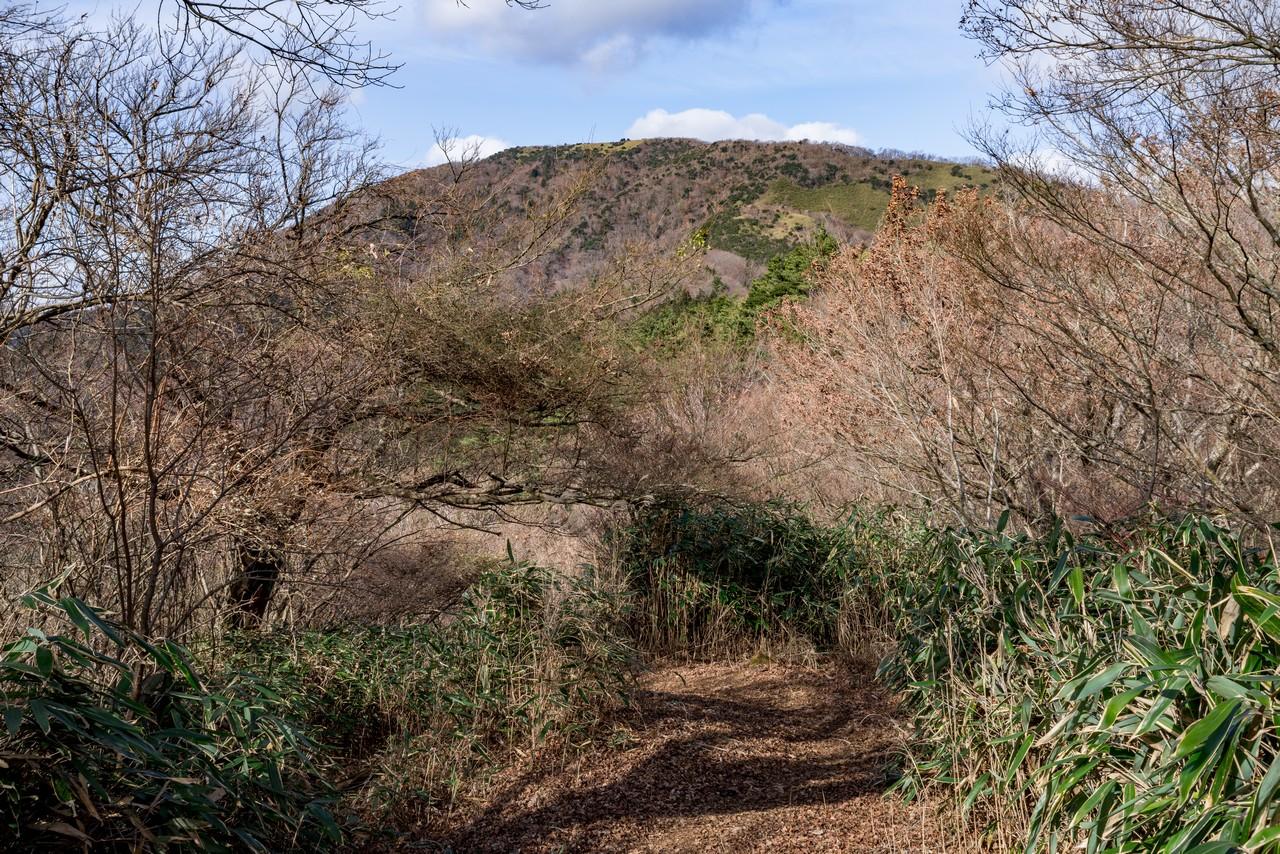 201226明神ヶ岳-055