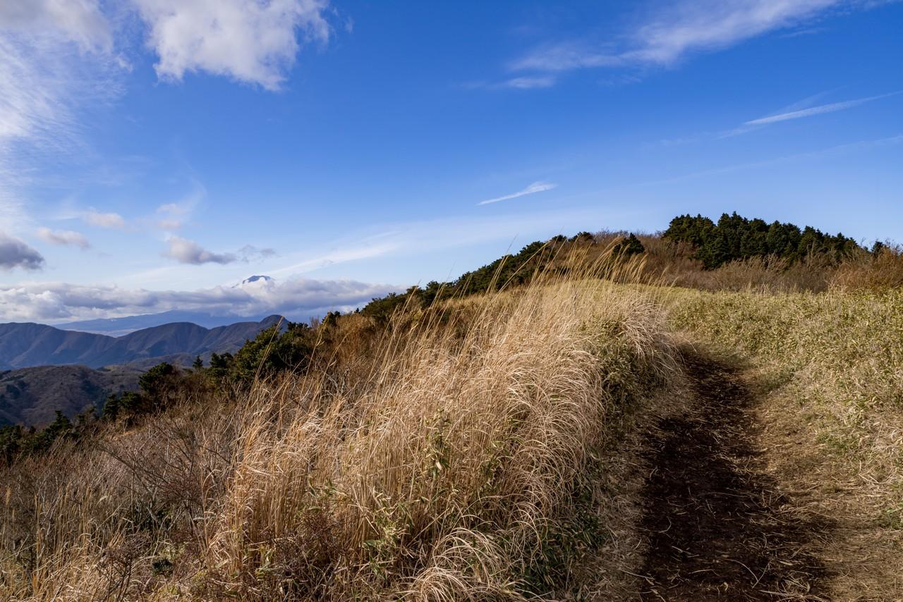 201226明神ヶ岳-060