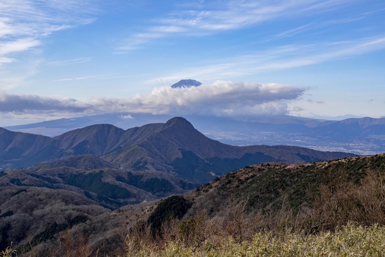 明神ヶ岳から見た金時山