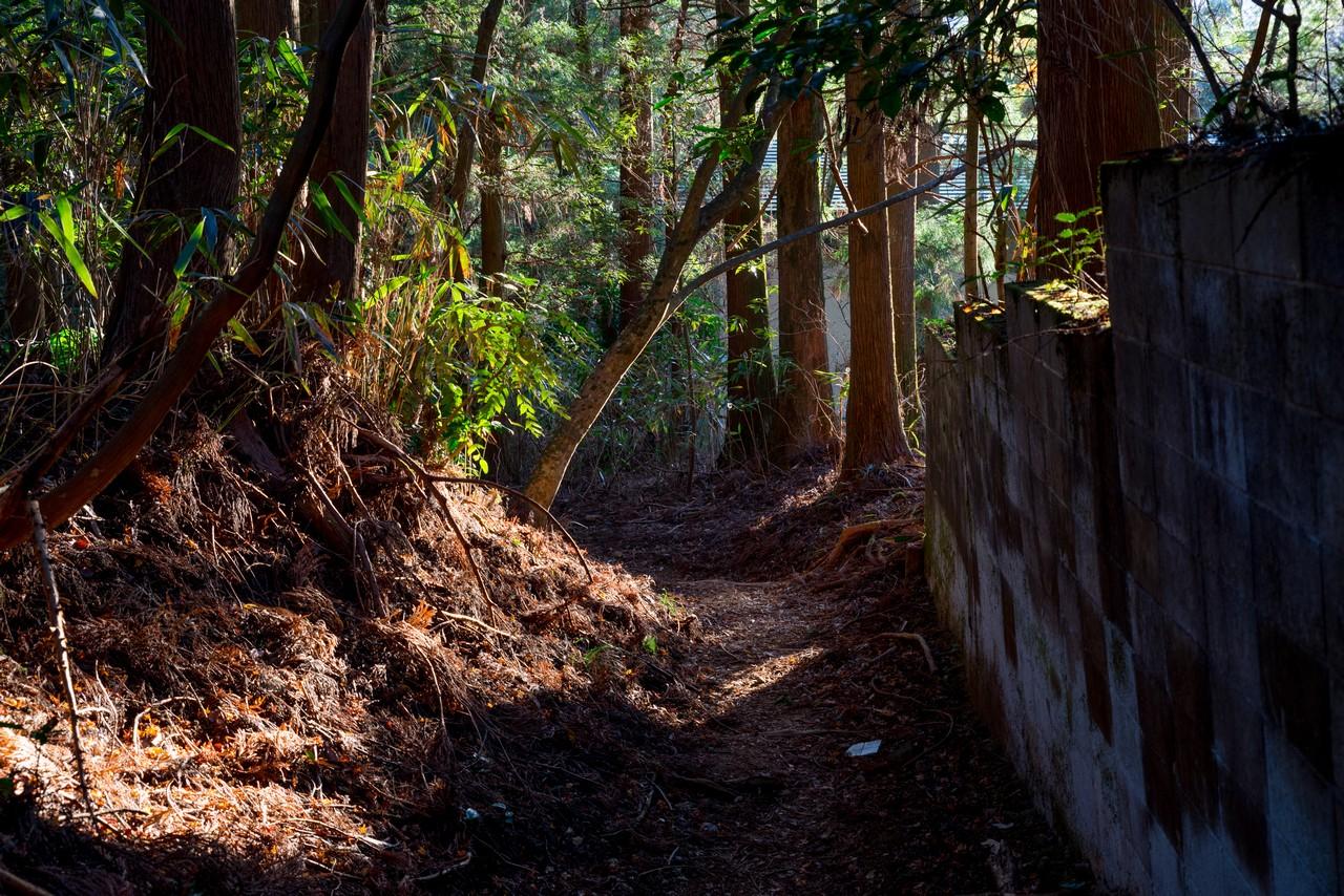 201226明神ヶ岳-078