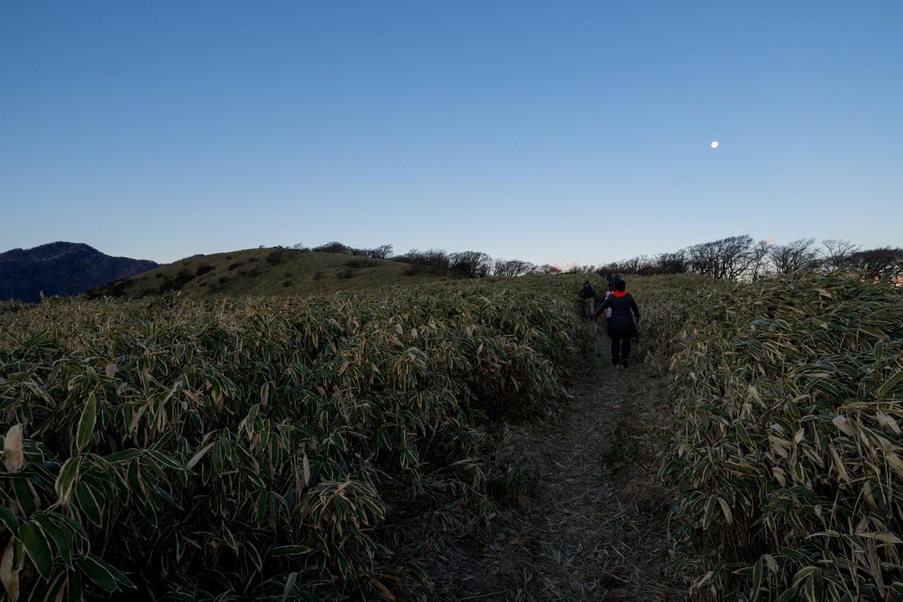 210101竜ヶ岳-055