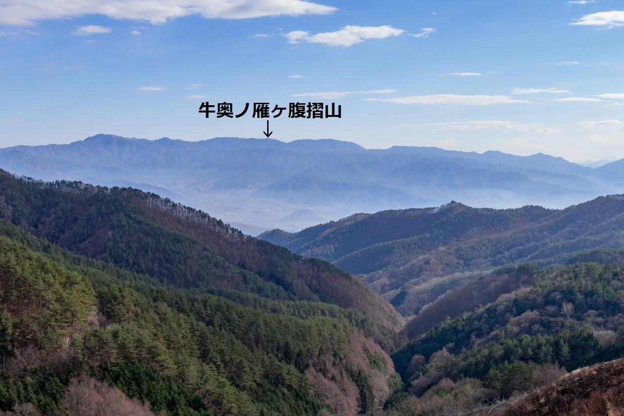帯那山付近から見た小金沢連嶺
