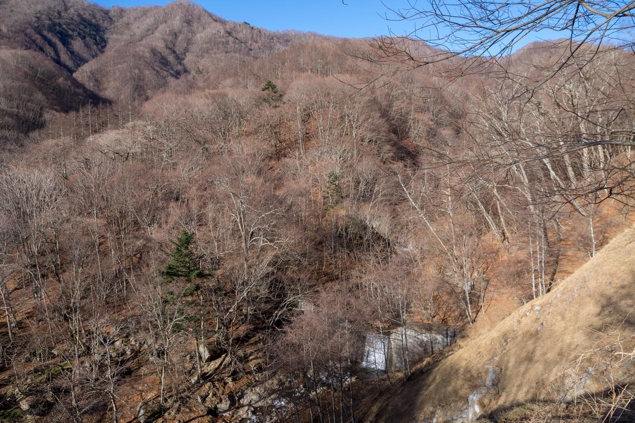 林道から見た湯ノ沢