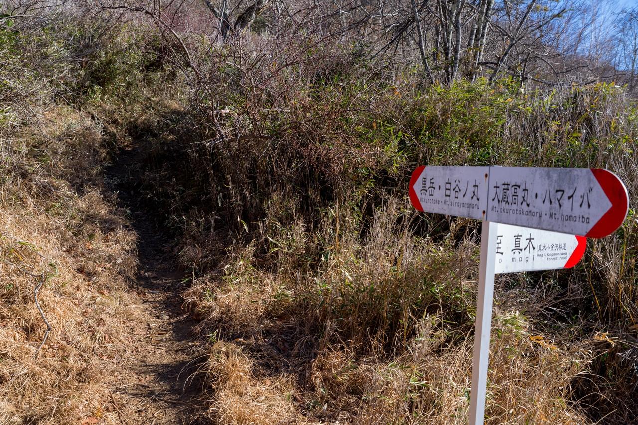 湯ノ沢峠の登山道