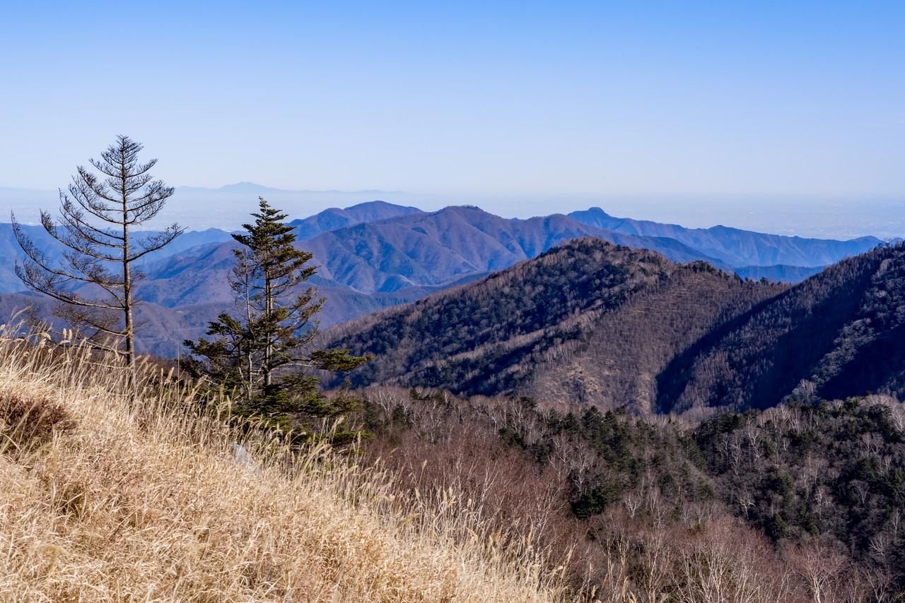 白谷ノ丸から見た奥多摩三山