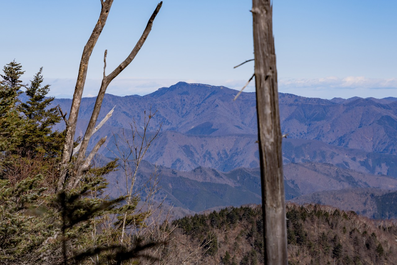 黒岳付近から見た雲取山
