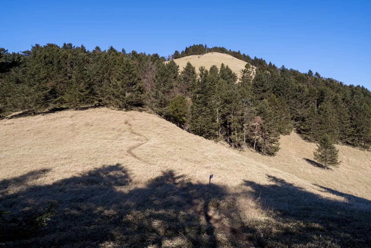 牛奥ノ雁ヶ腹摺山の山頂直下の登り