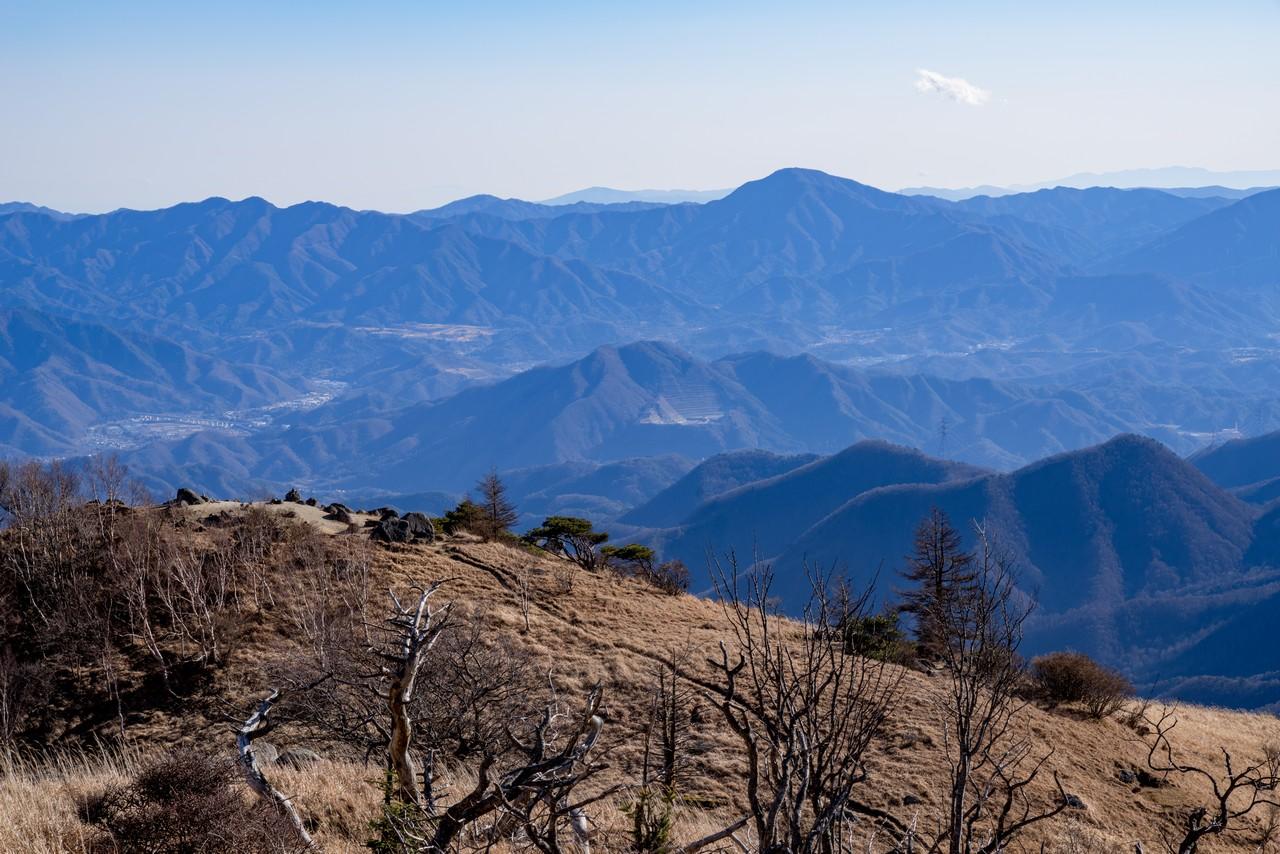 白谷ノ丸から見た高川山