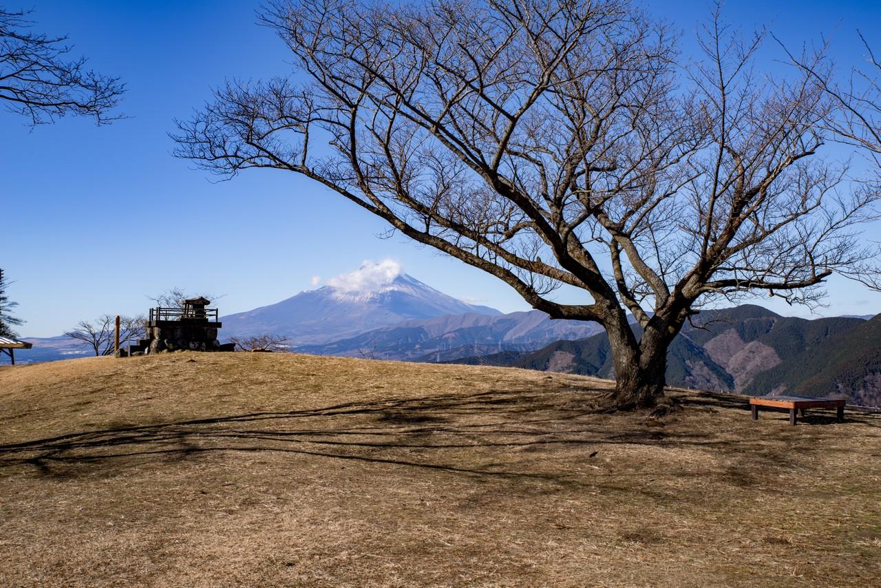 大野山の山頂