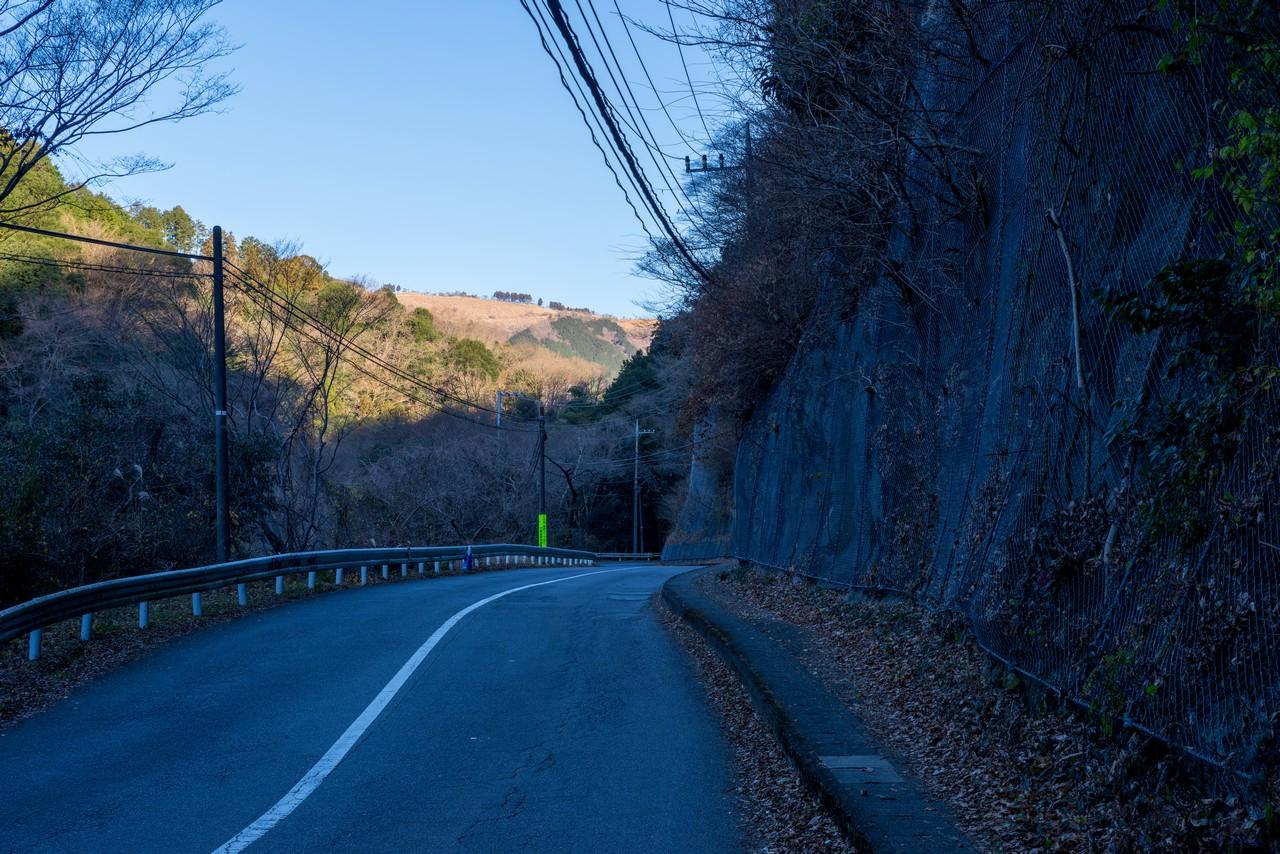 麓から見た大野山の山頂部