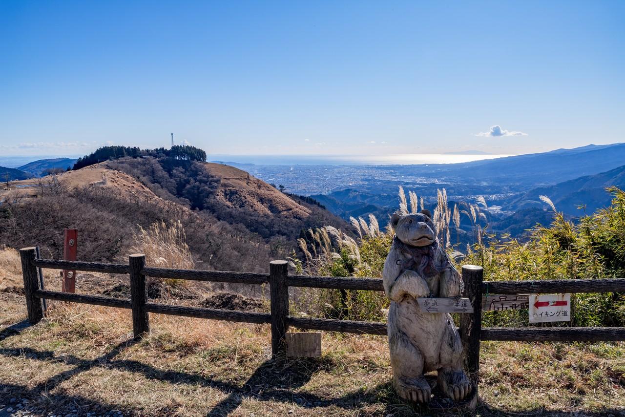 大野山の稜線