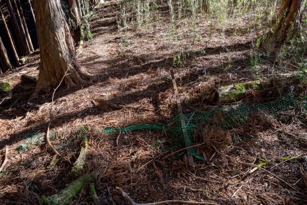 日影山 倒れた鹿よけの柵