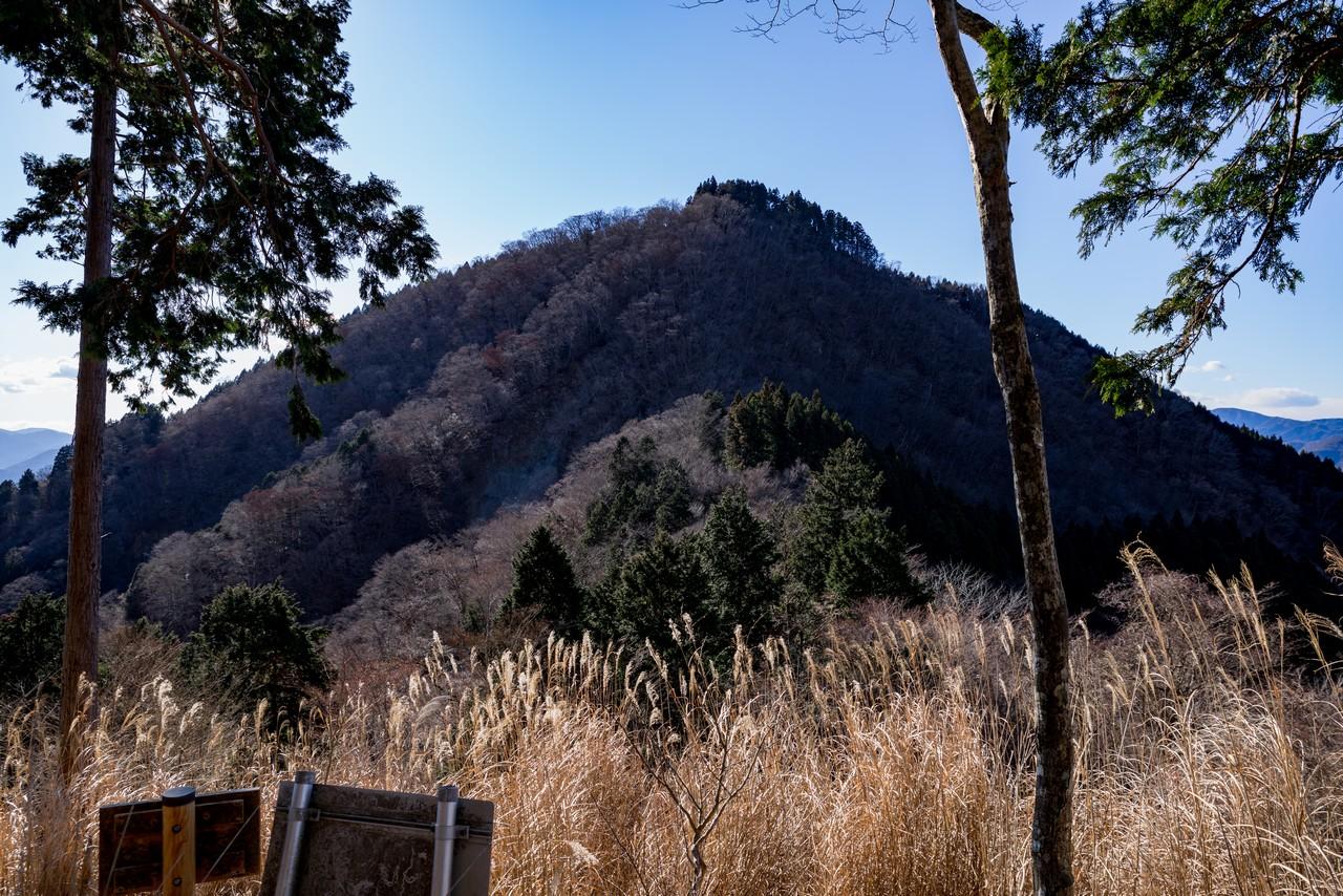 秦野峠林道から見た日影山