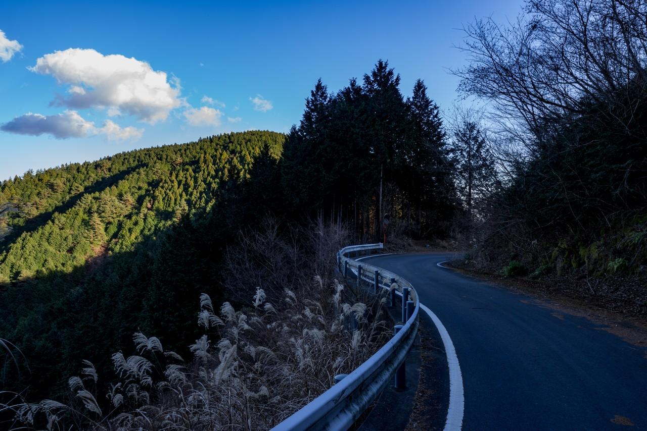 秦野峠林道から見たシダンゴ山