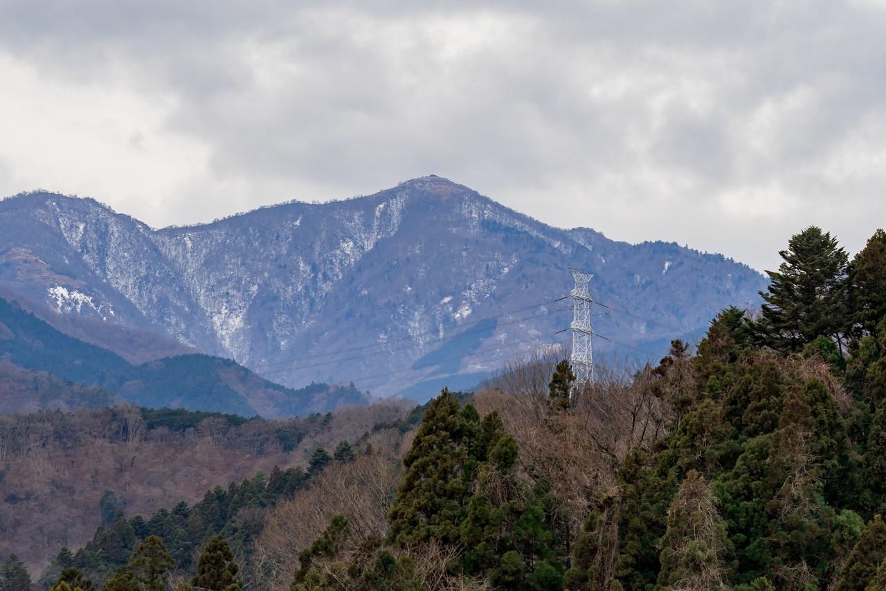 鳥居原園地から見た蛭ヶ岳