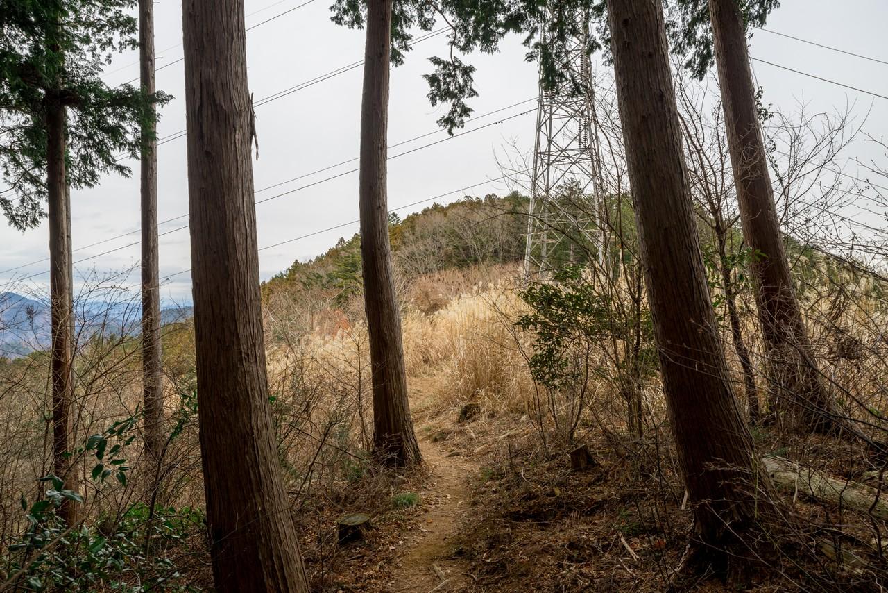 南山の送電鉄塔