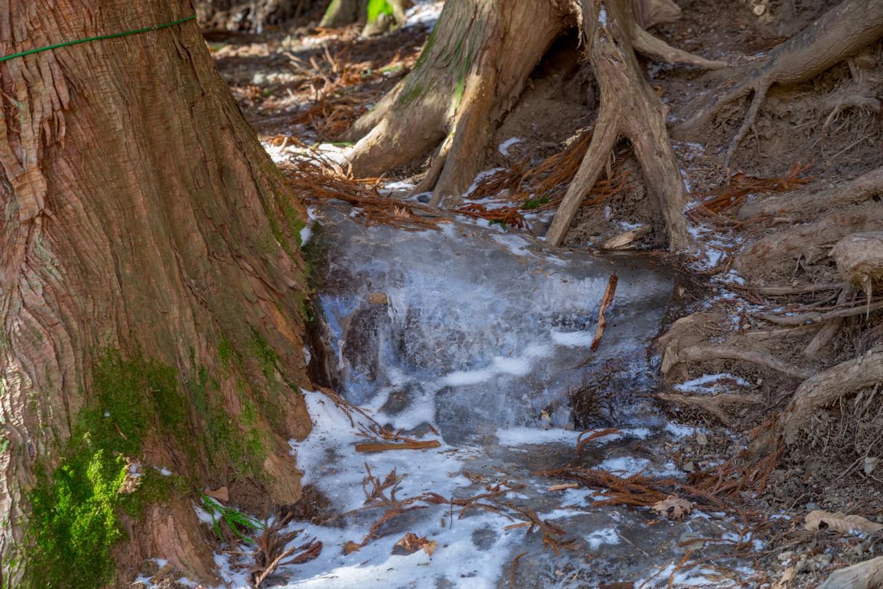 凍結した鴨沢ルートの水場