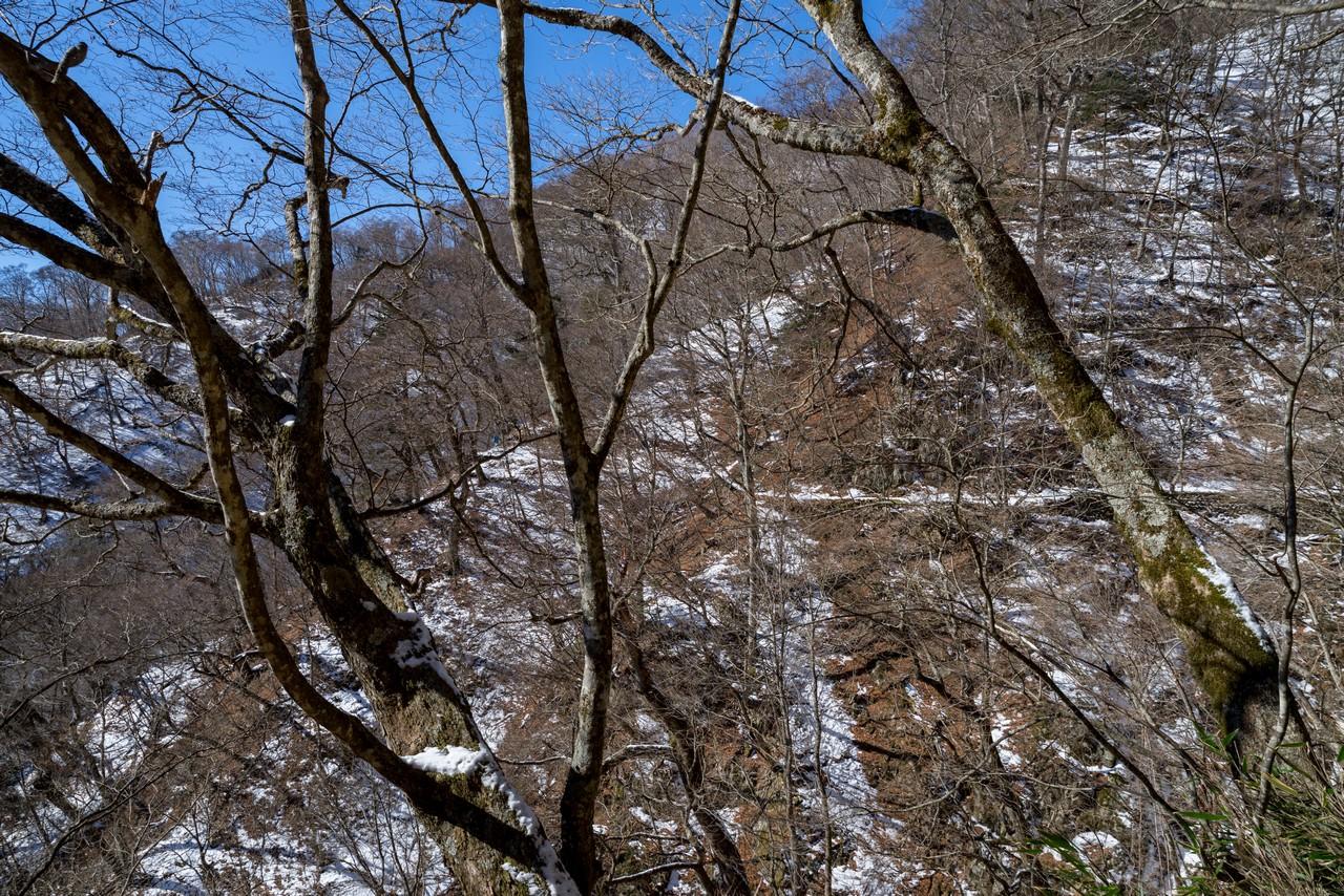 七ツ石山の巻き道