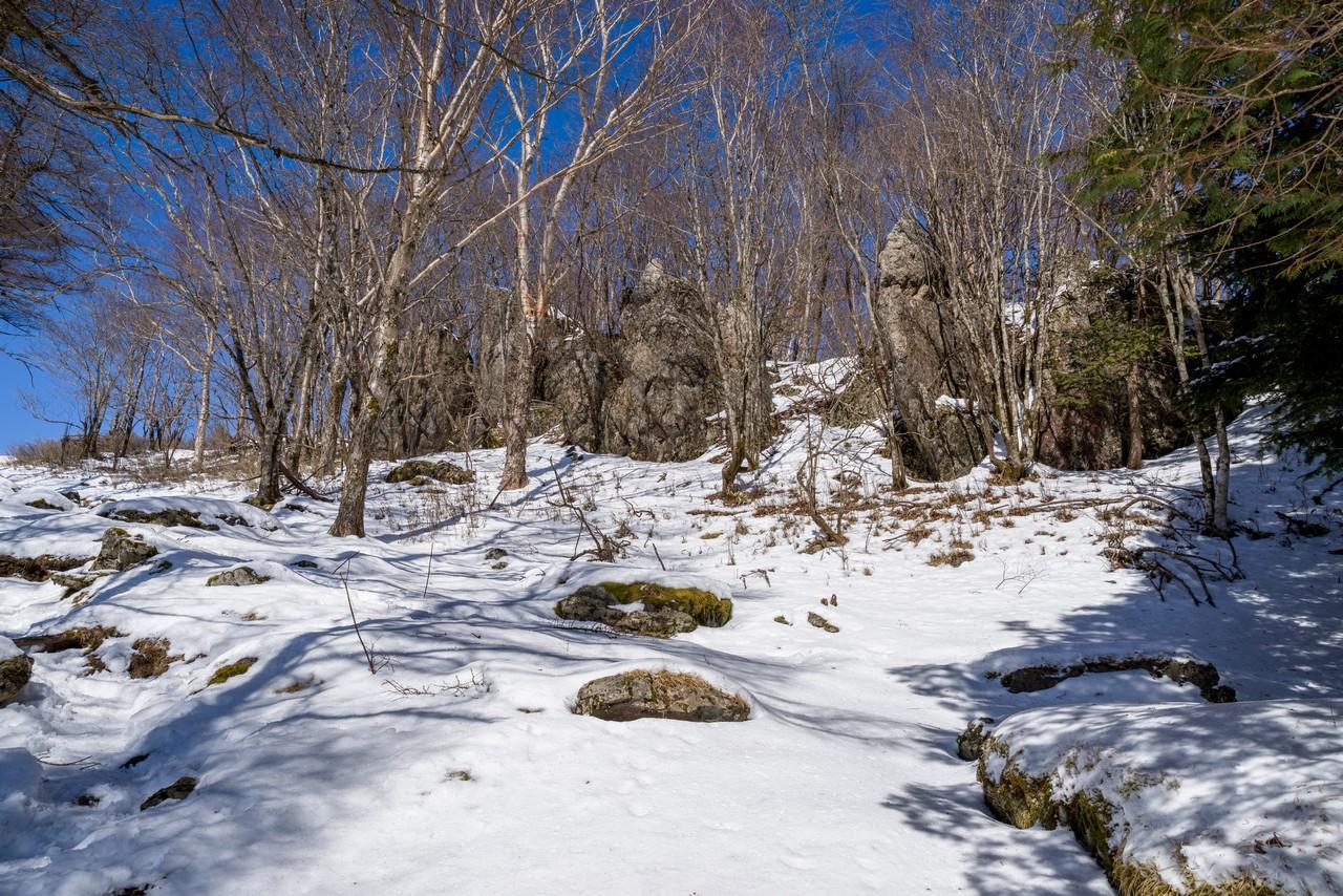 七ツ石山の岩