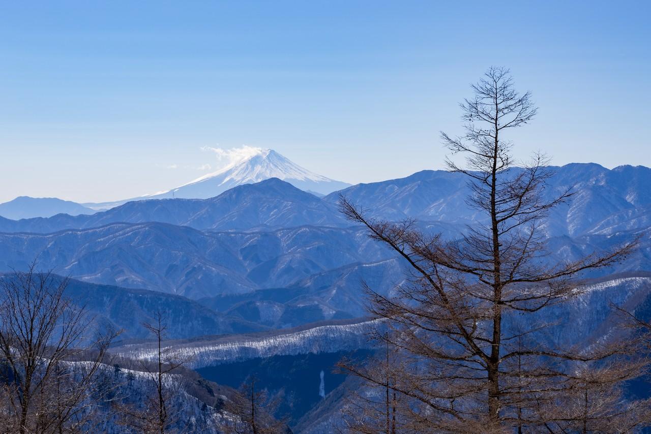 石尾根縦走路から見た富士山