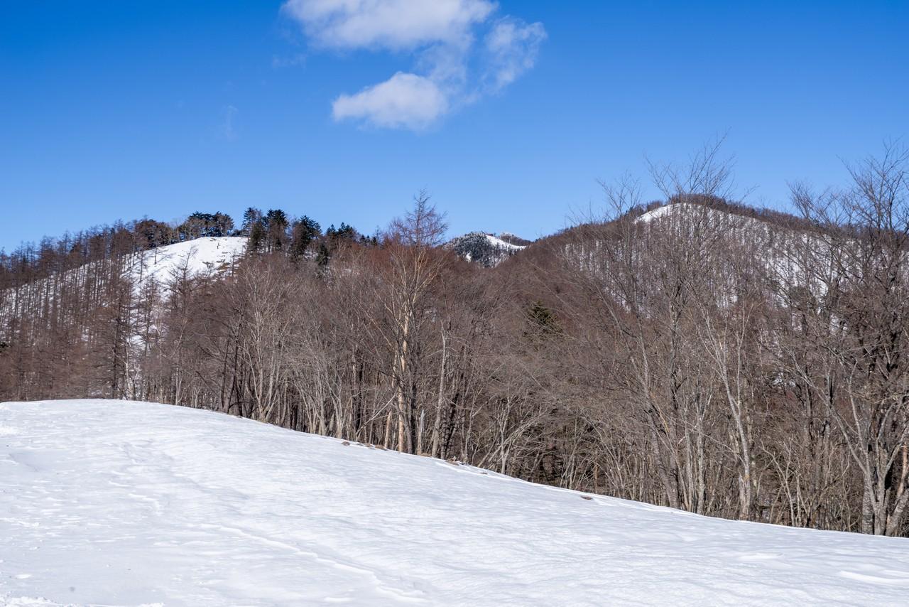 雪期の石尾根縦走路