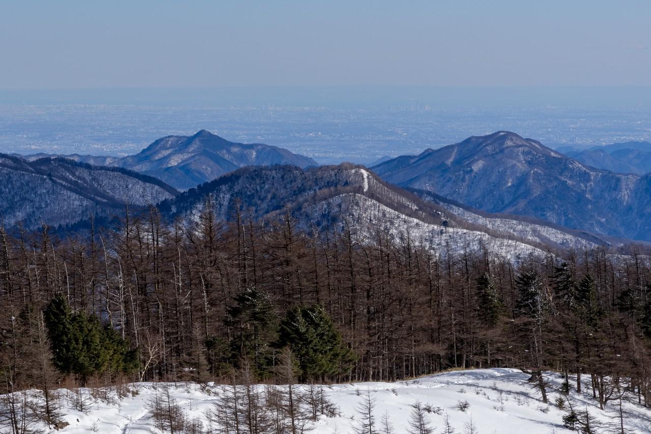 雲取山から見た大岳山と御前山
