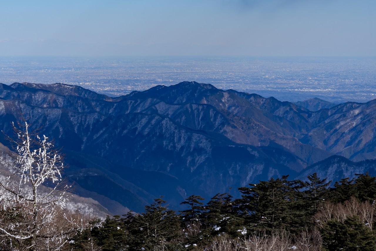 雲取山から見た川苔山2