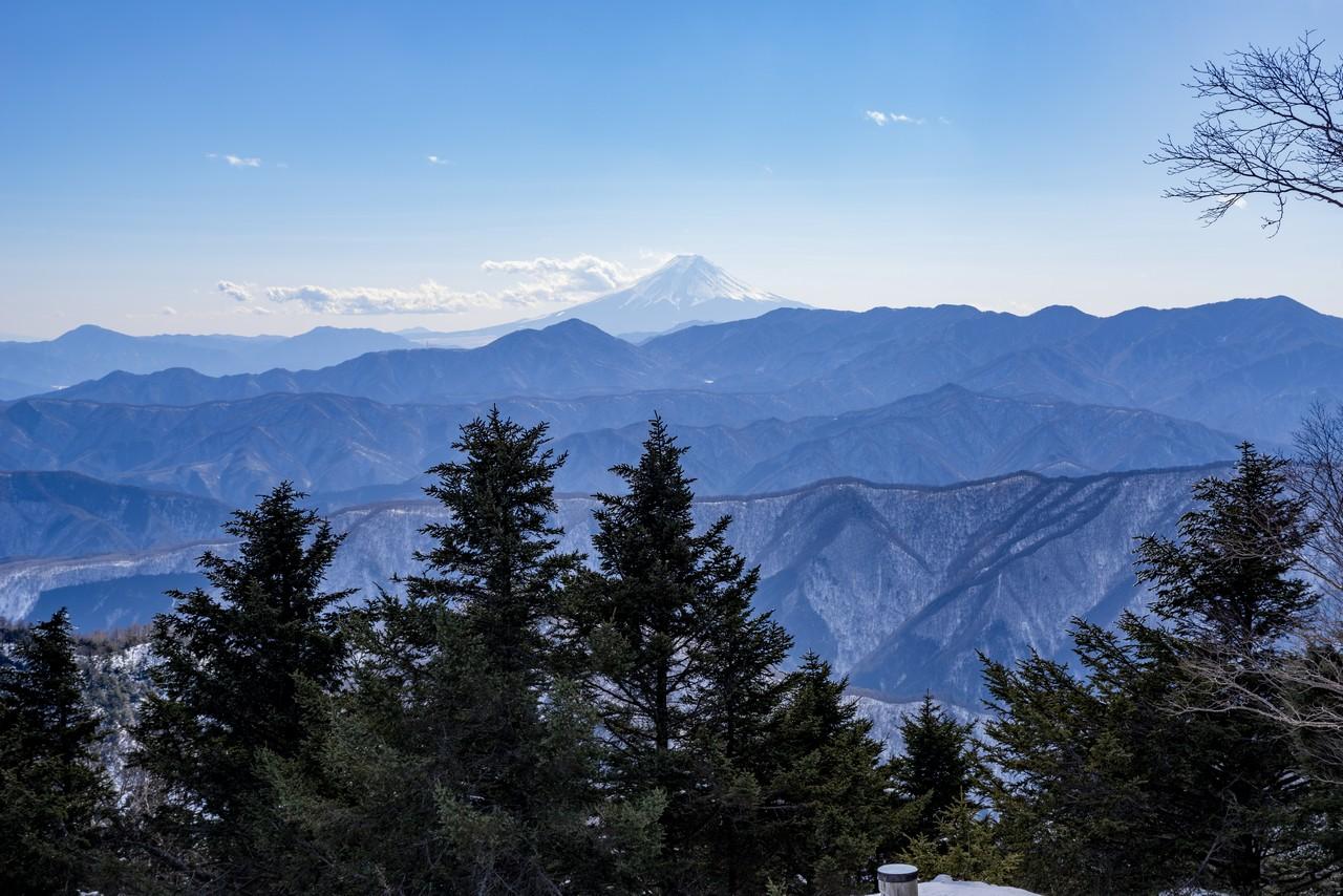 雲取山から見た富士山