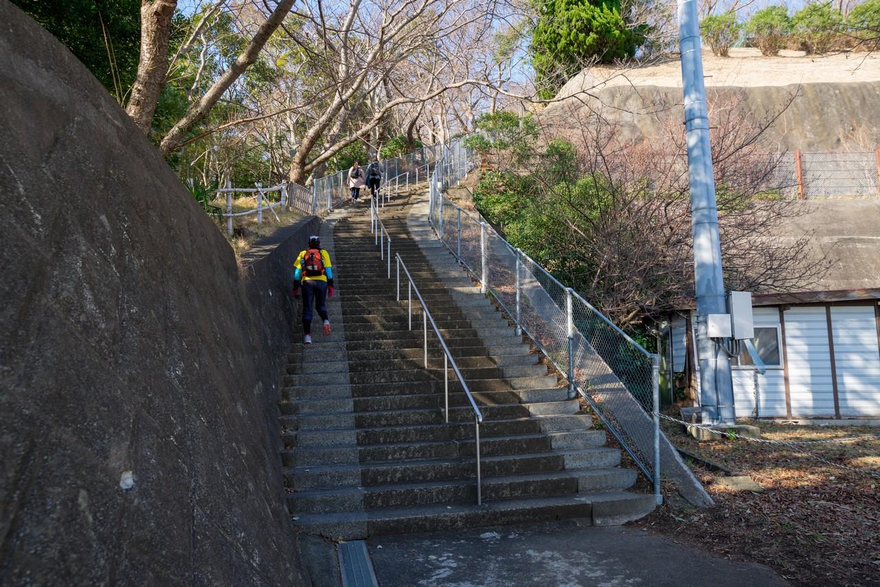 吾妻山公園役場口の階段