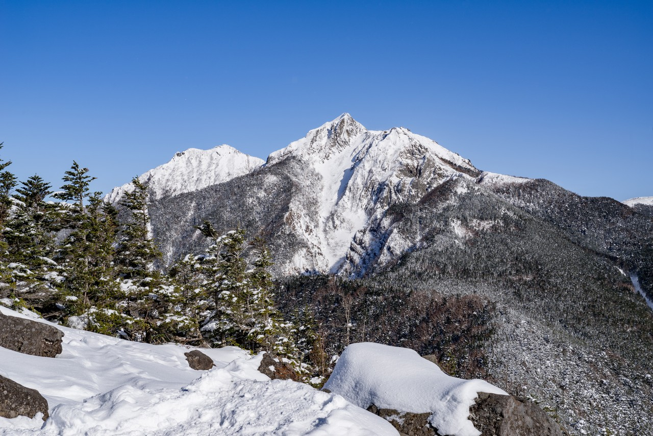 西岳から見た権現岳