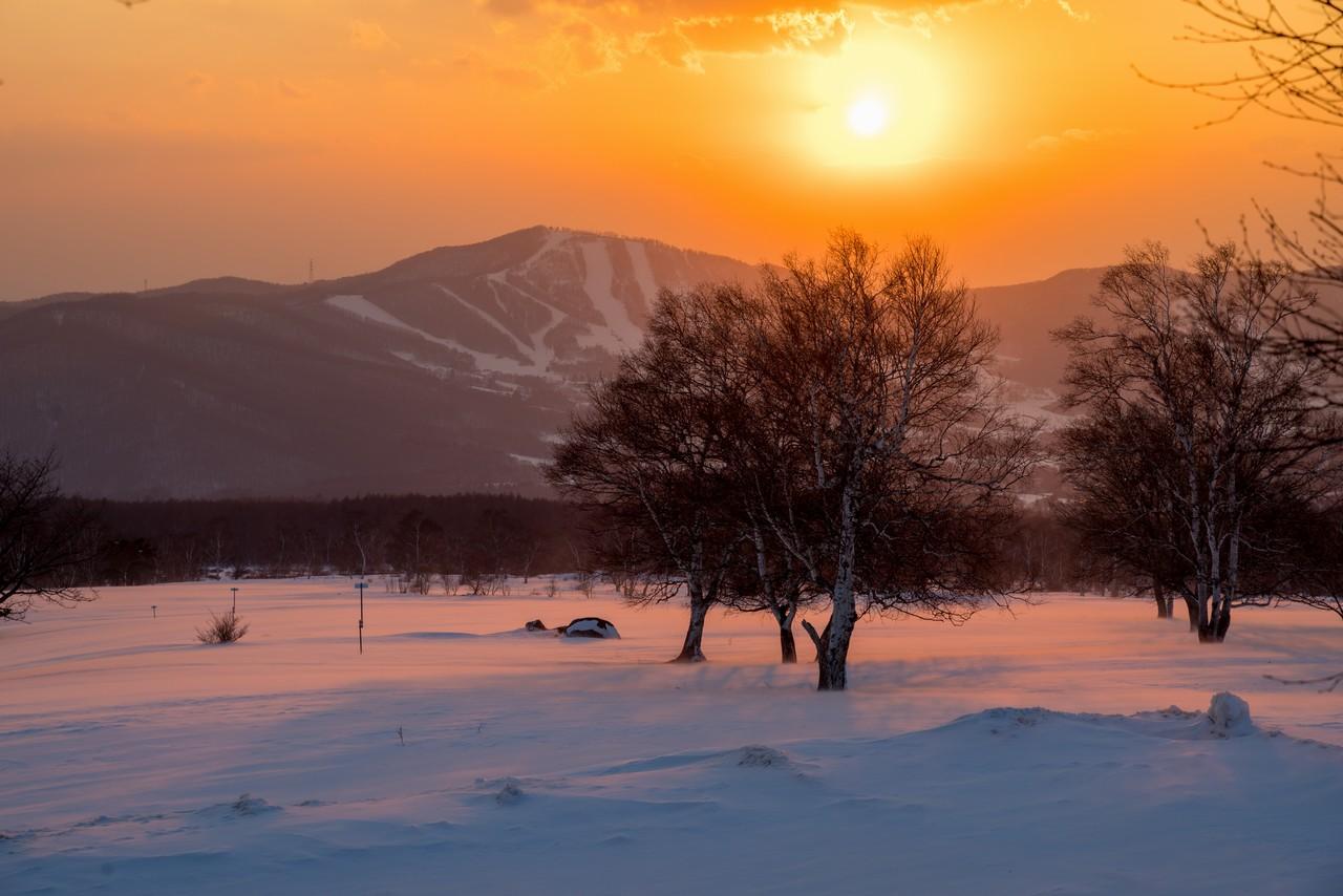 夕暮れ時の菅平高原牧場