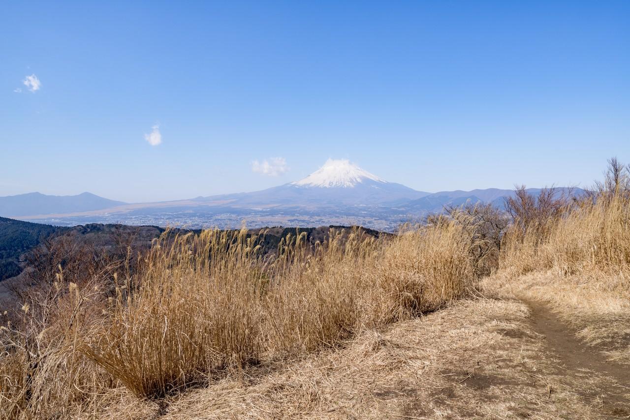 矢倉岳から見た富士山