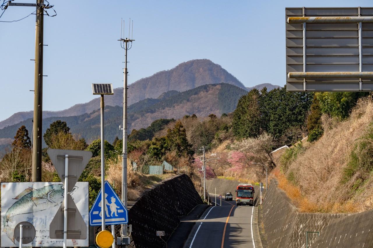 矢倉沢バス停から見た金時山