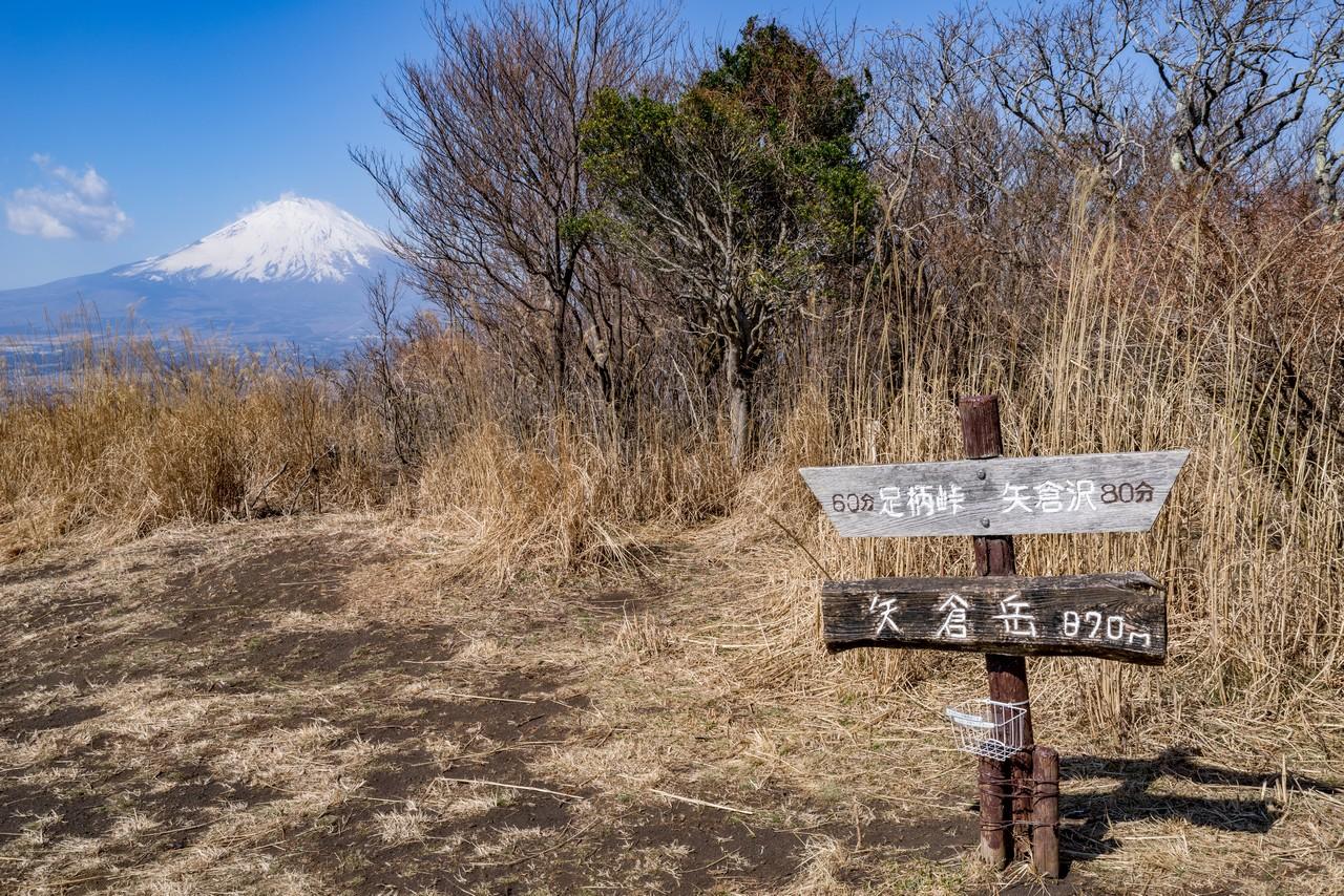 矢倉岳の山頂